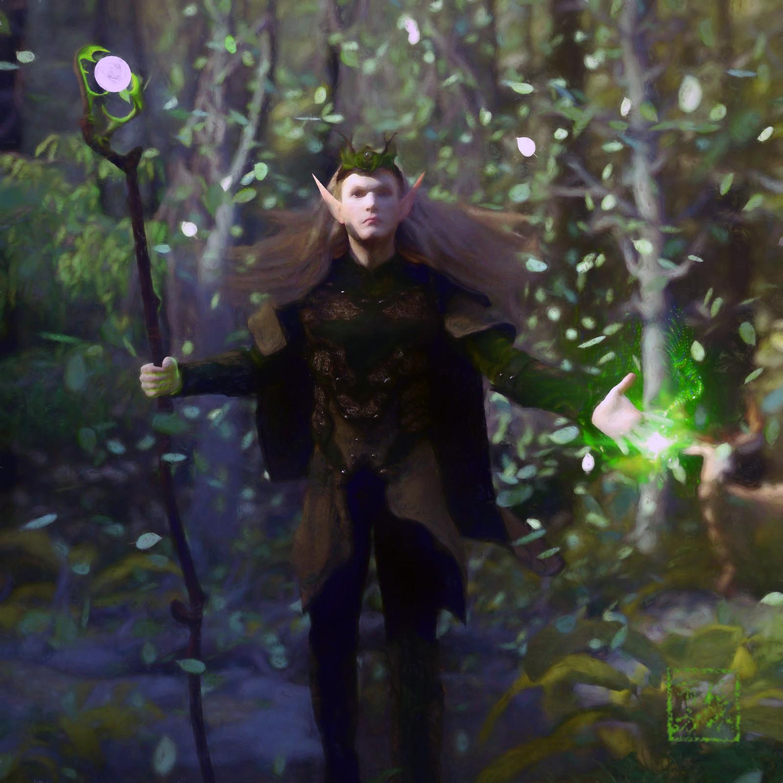 Finthorin Valtorin (Elf Druid)