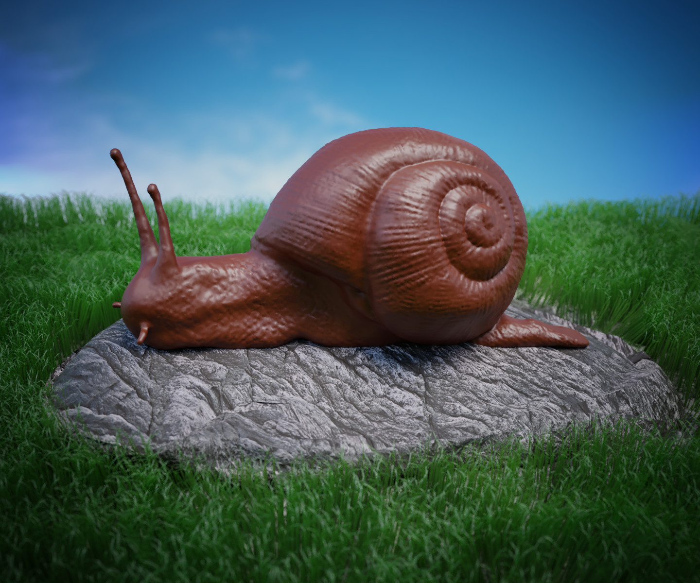 Snail on the loose