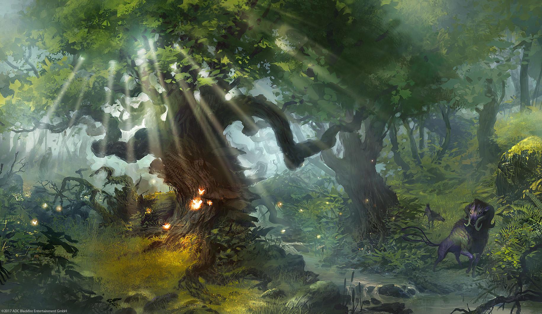 Svetlin velinov forest
