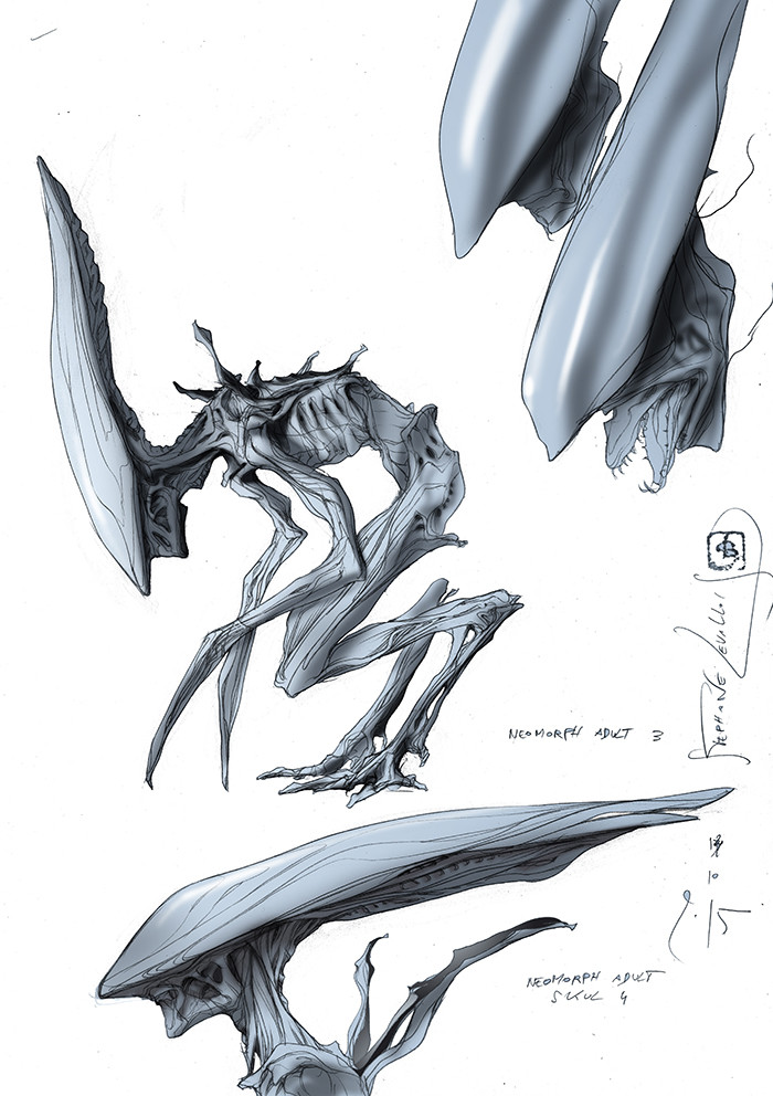 neomorph adult 2 color first concept p2