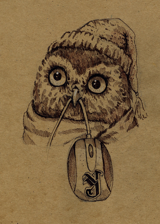 Смешные совы в рисунках, картинки пить