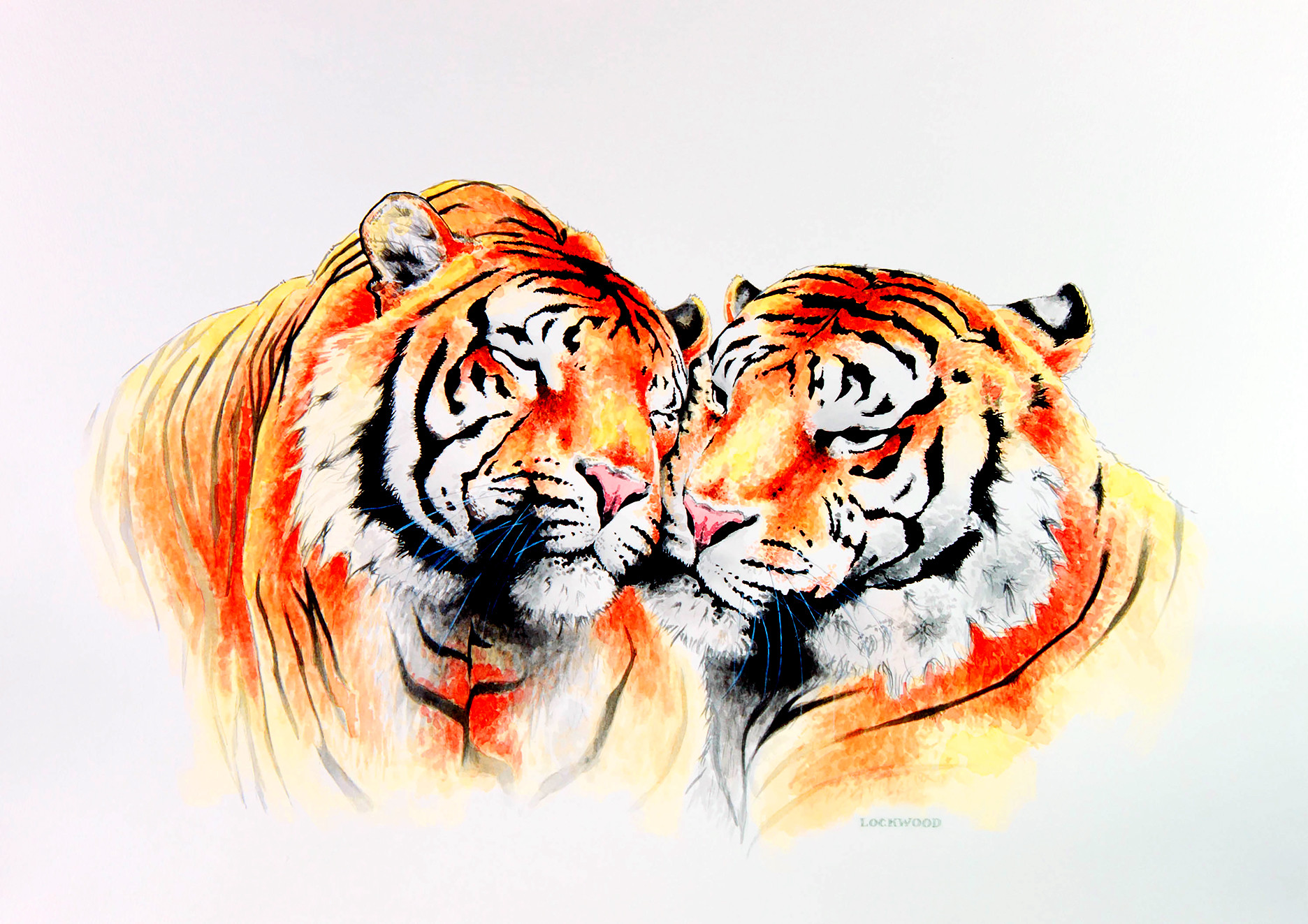 "Tiger Duo 20x30"""
