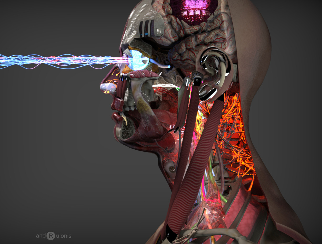 Dariusz andrulonis 11 android