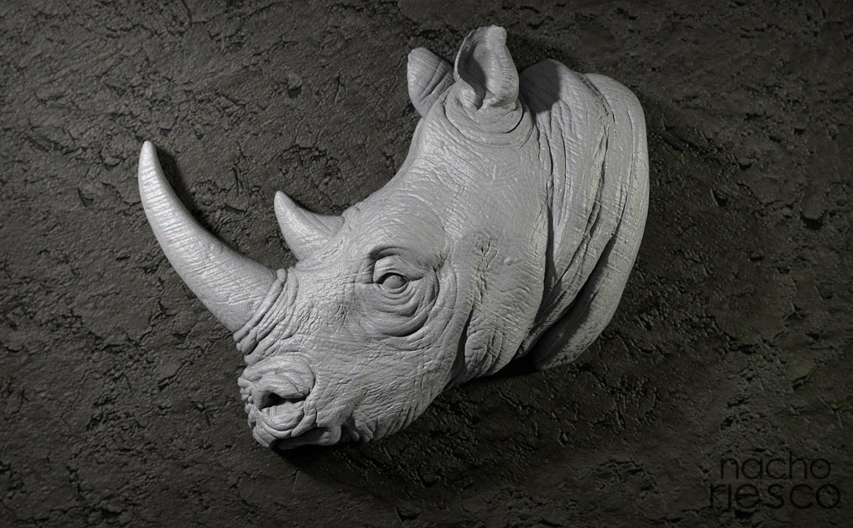 Nacho riesco gostanza rinoceronte 500k