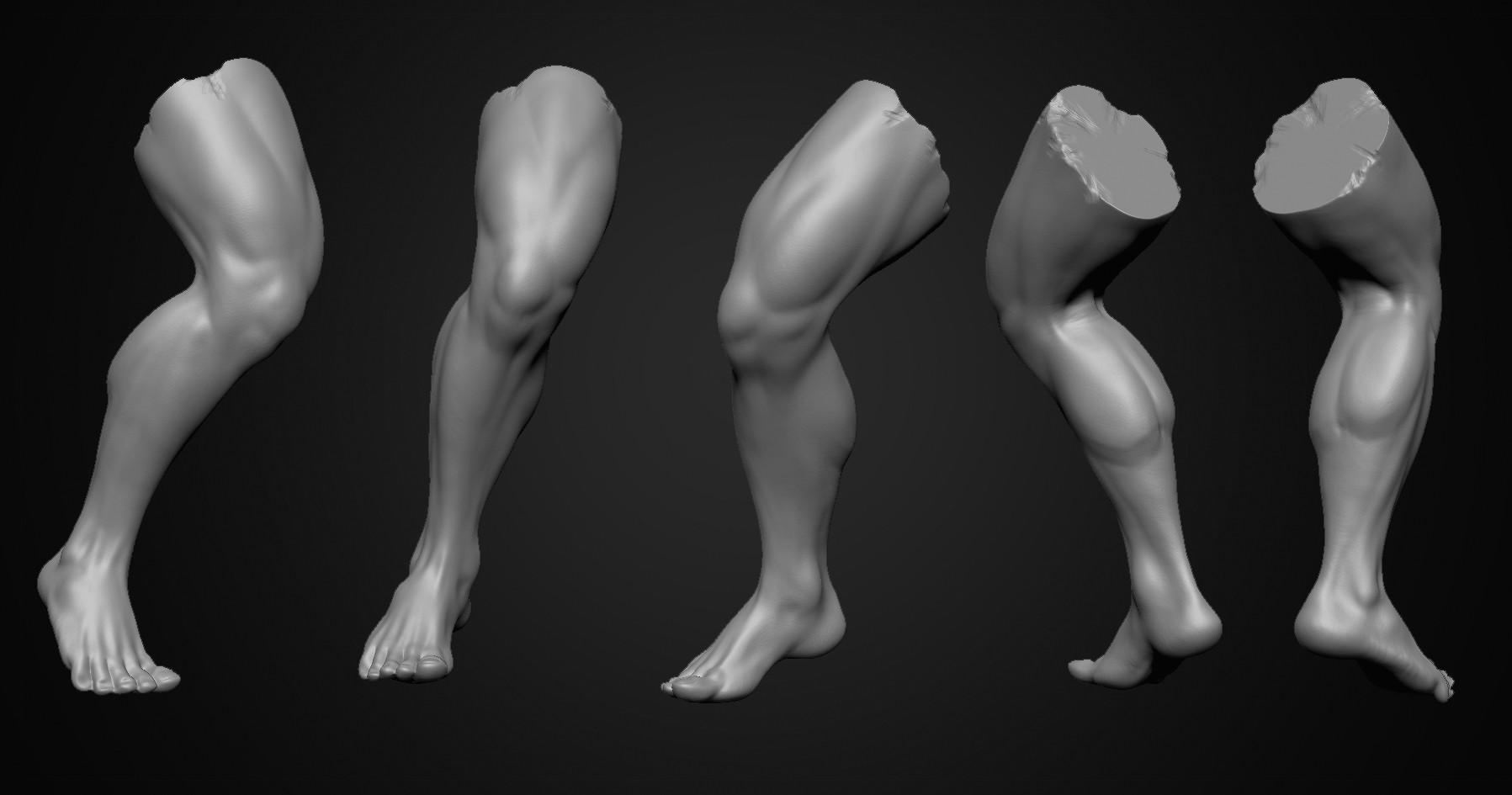 Jae wook Park - Low leg anatomy study