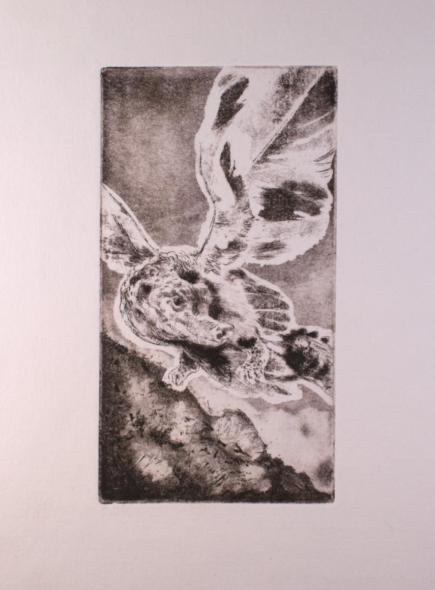 Zoltan korcsok etching 02
