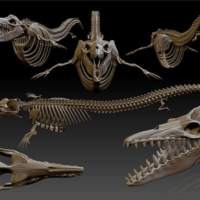 Timothy klanderud dorudon bones zbrush document various 2