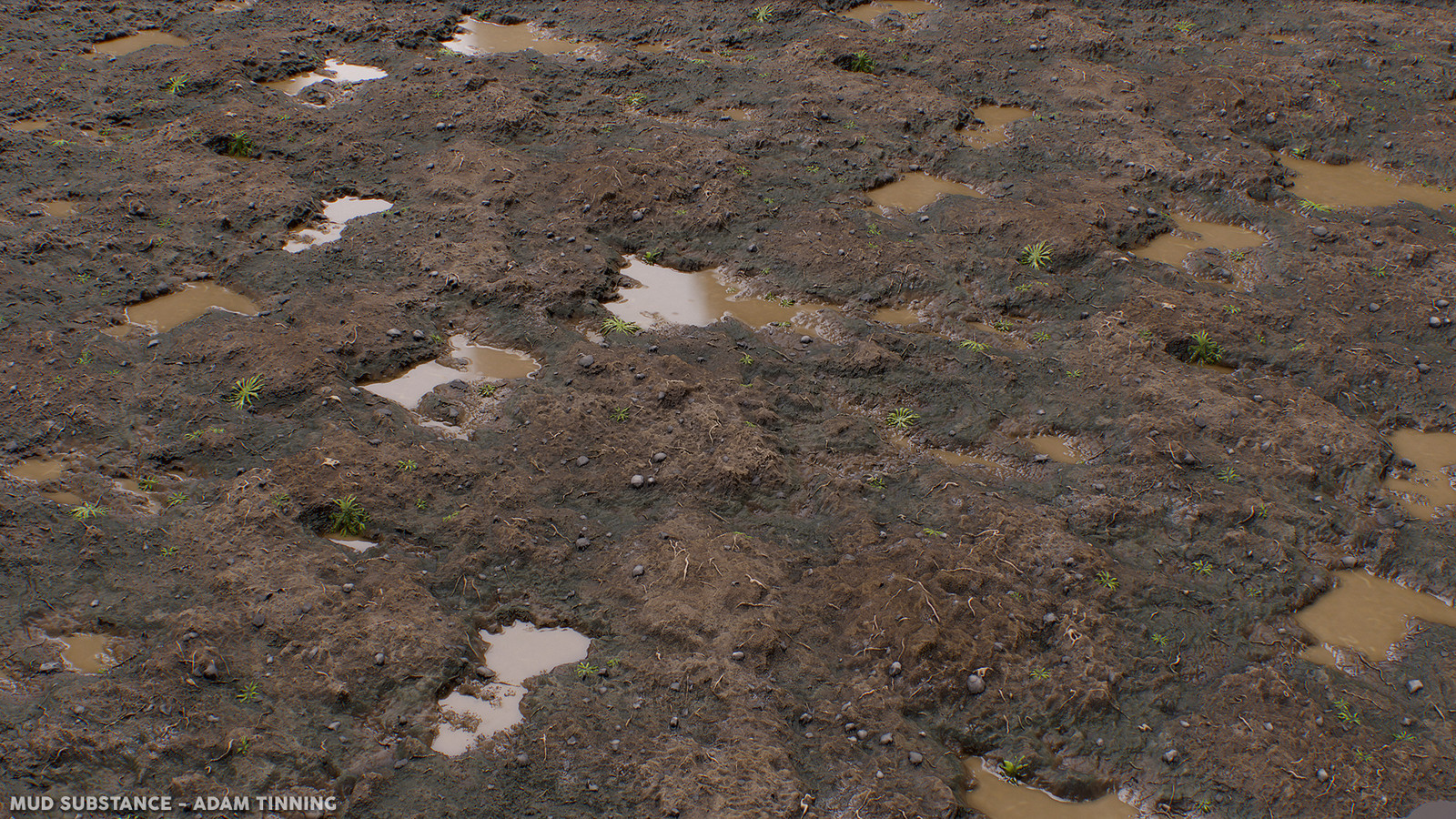 Mud Substance