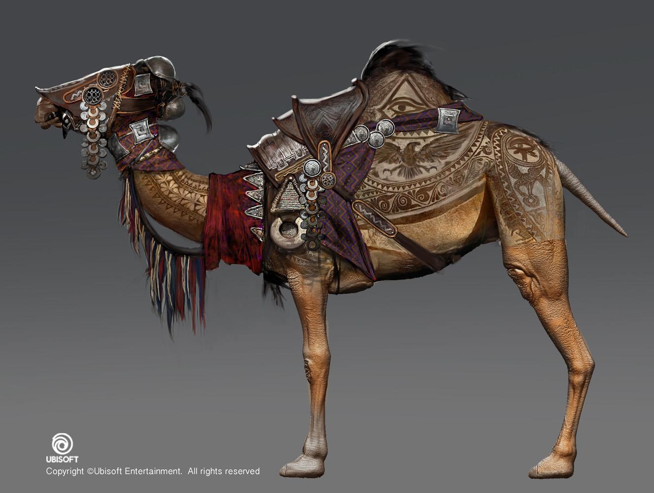 Jeff simpson camel sheared