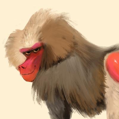 Baboon <3