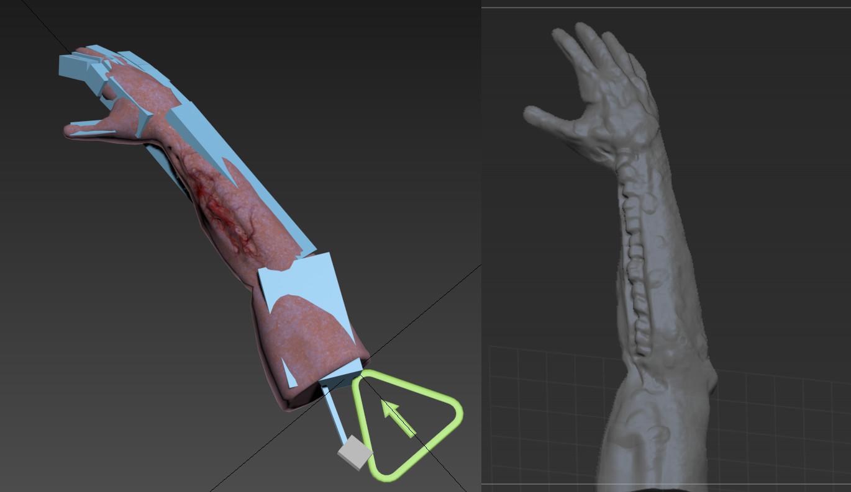 Arm Rig/Sculpt