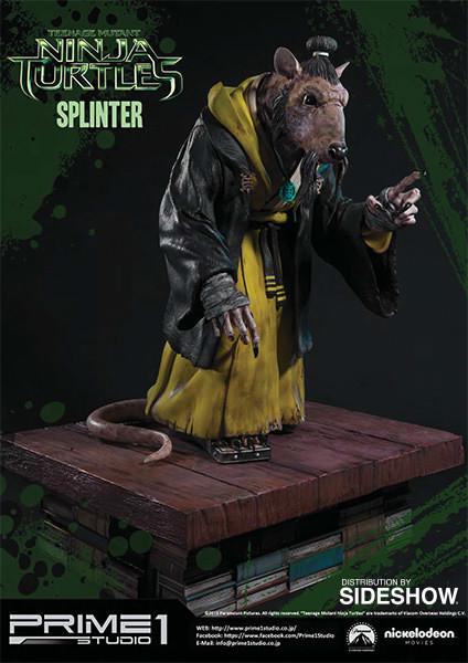 Alejandro pereira 902453 splinter 04