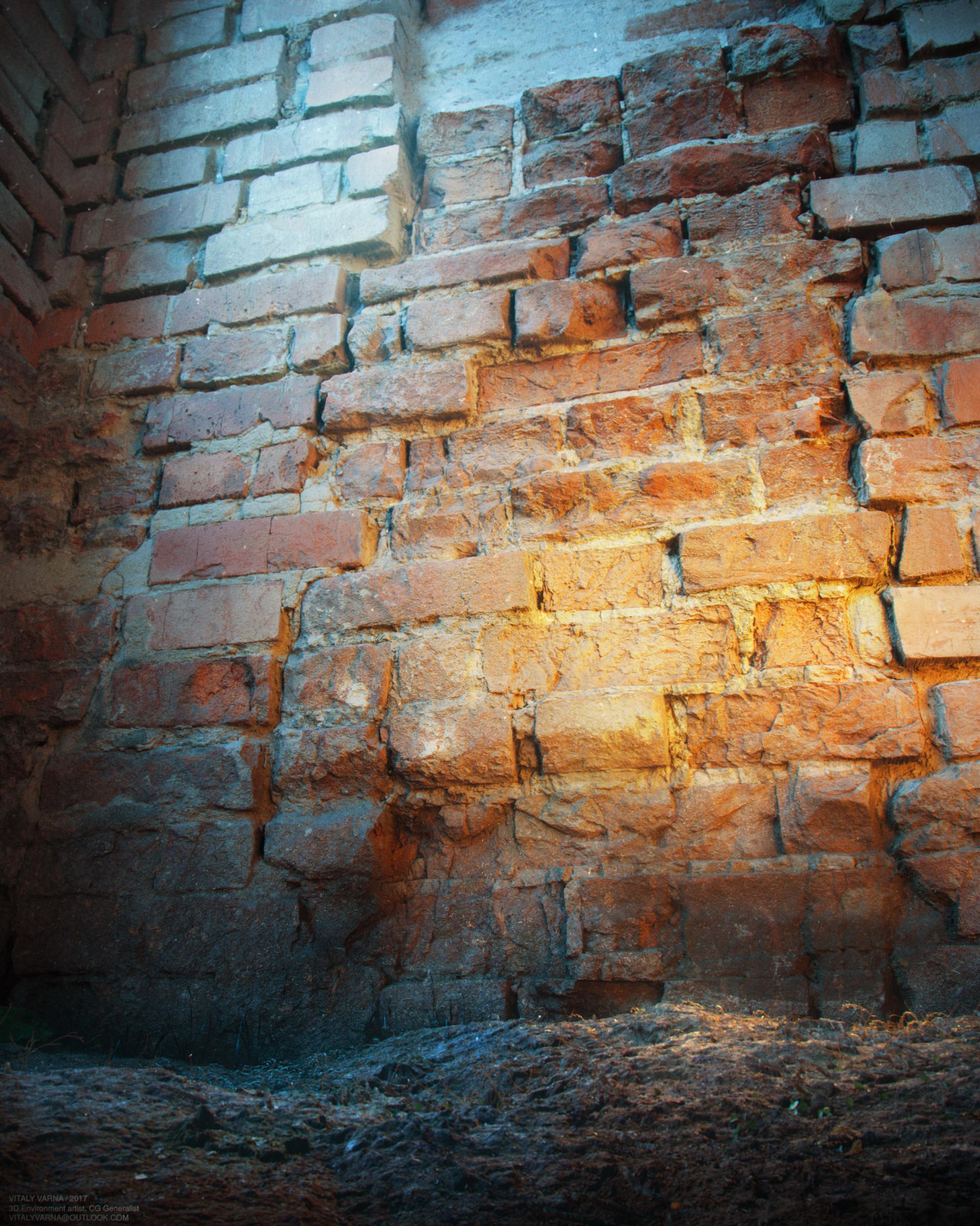Vitaly varna study wall 02