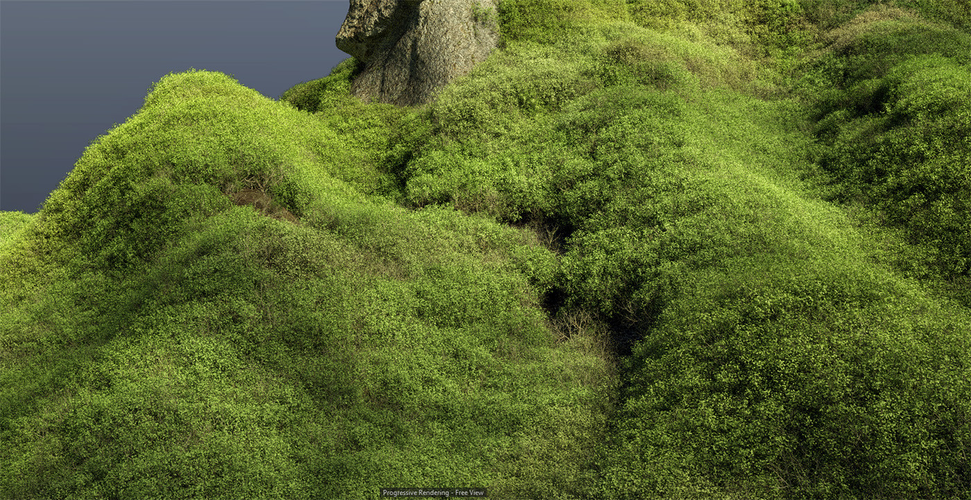 Vegetation close-up in 3d viewport