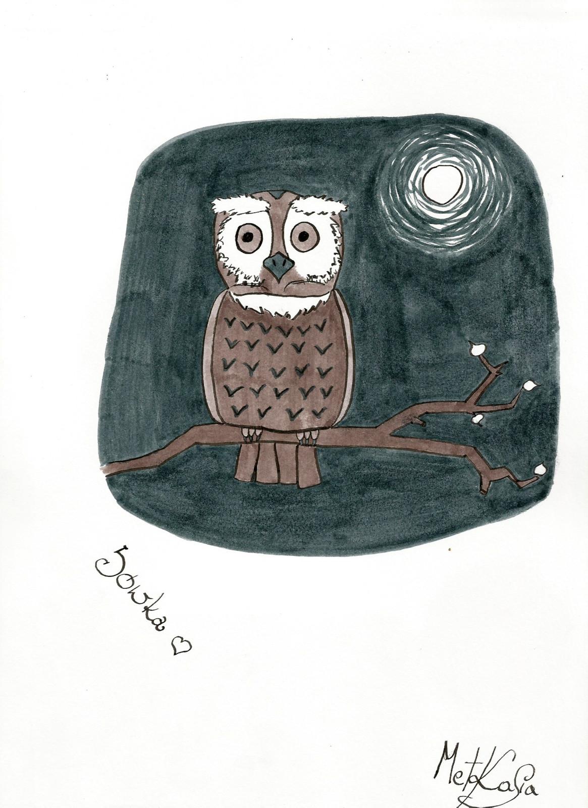 Sówka / Sowa (Owl)