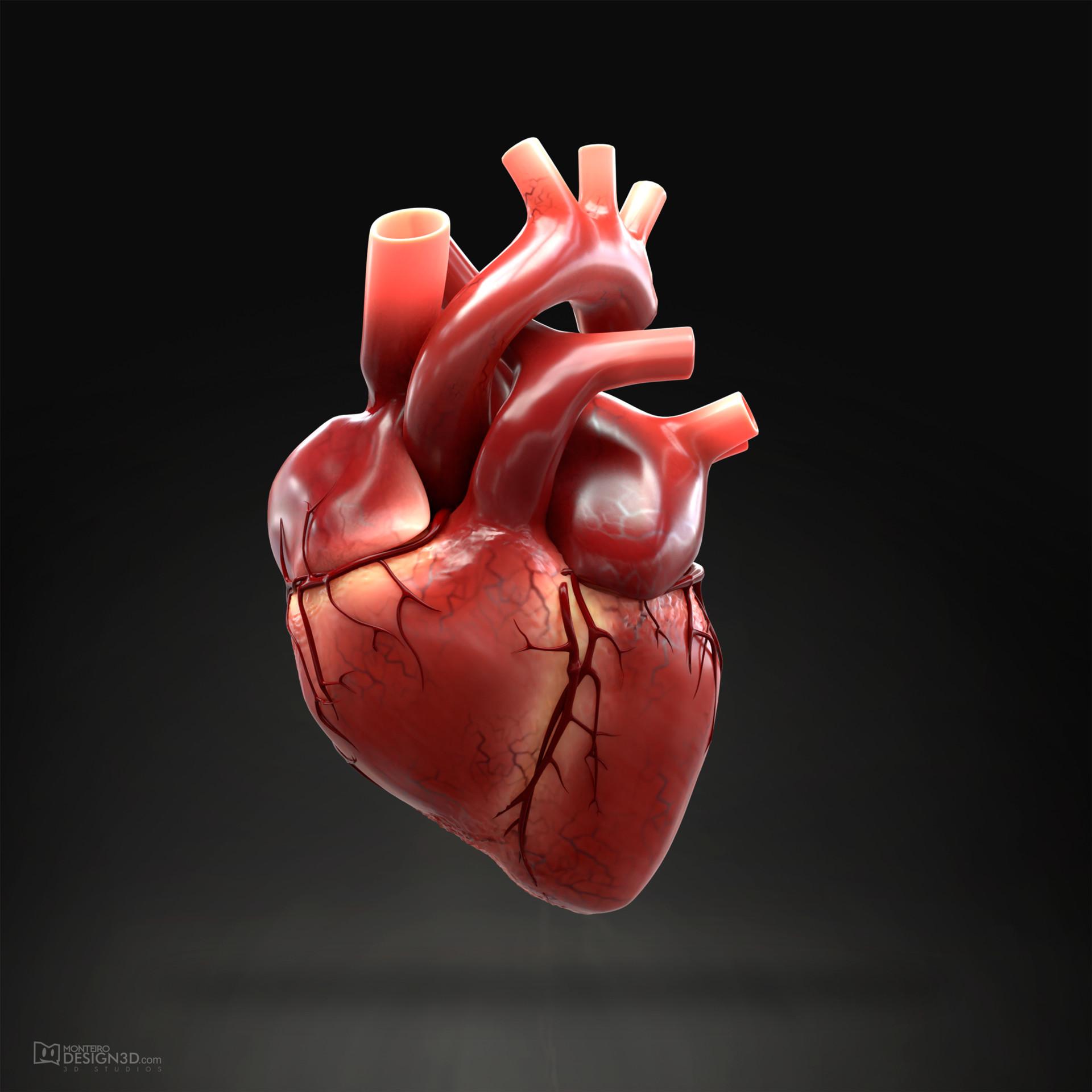 Alisson monteiro heart 3d