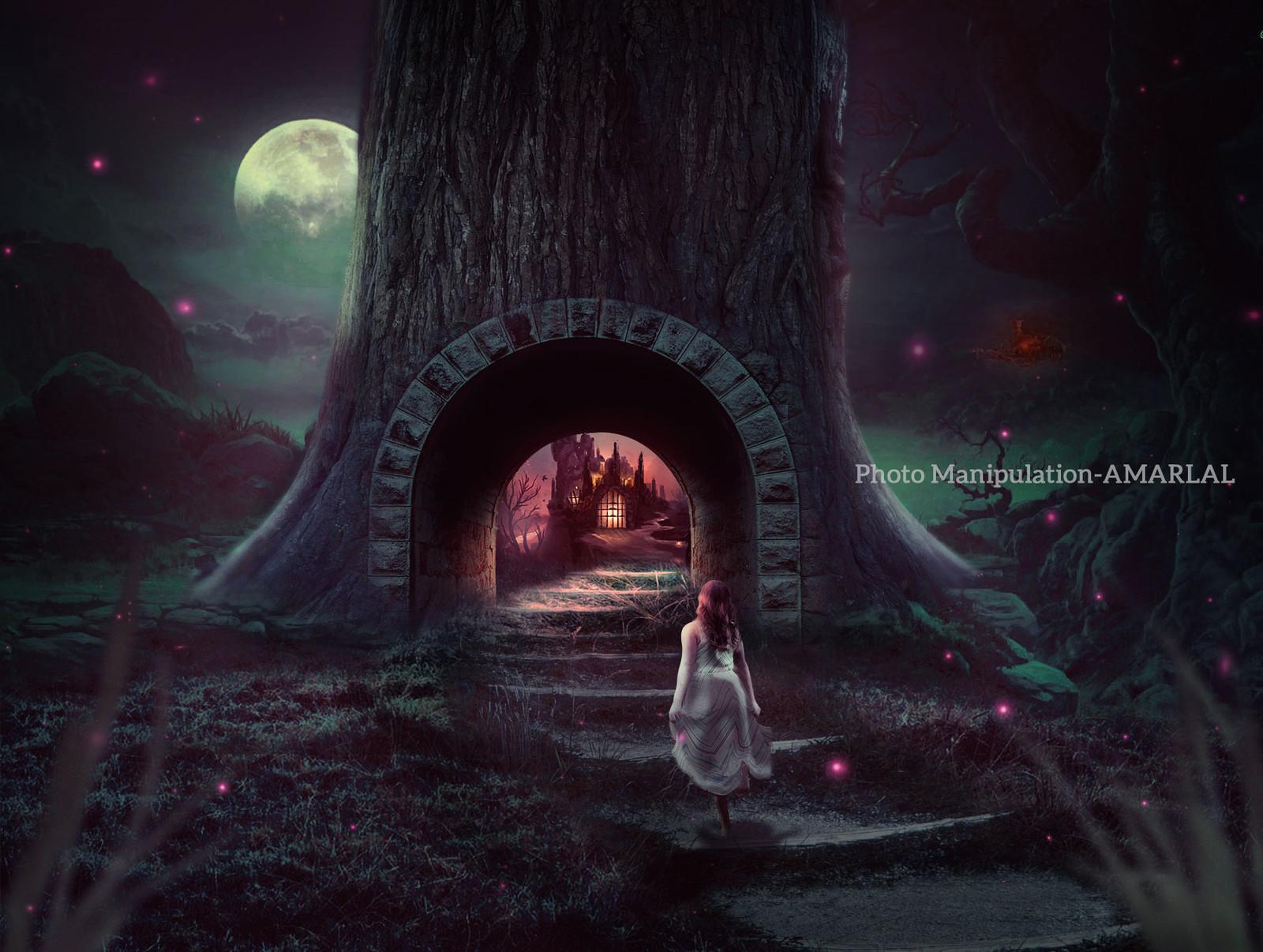 Dream Fantasy World