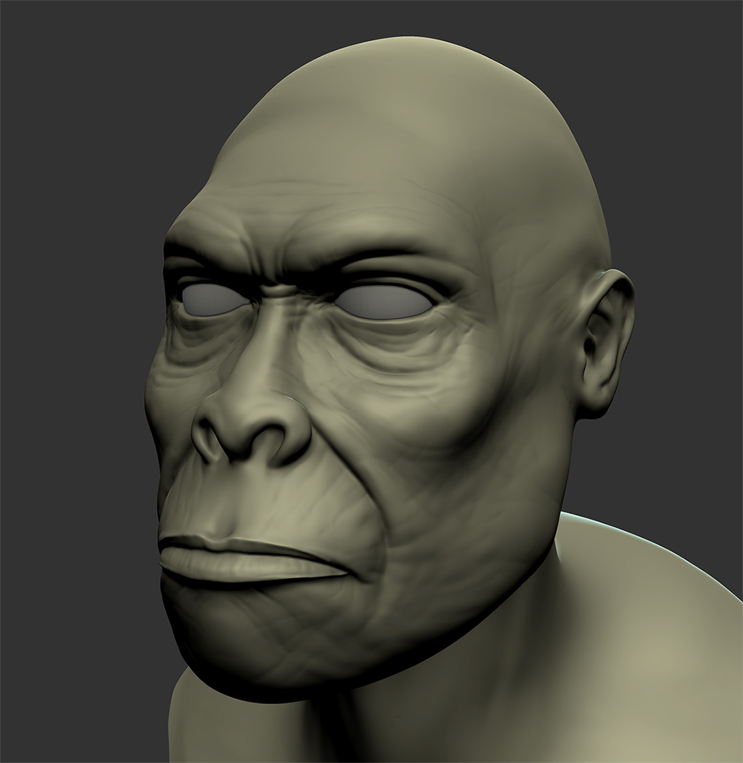A 4-hour Mudbox head sculpt...still learning the tools.
