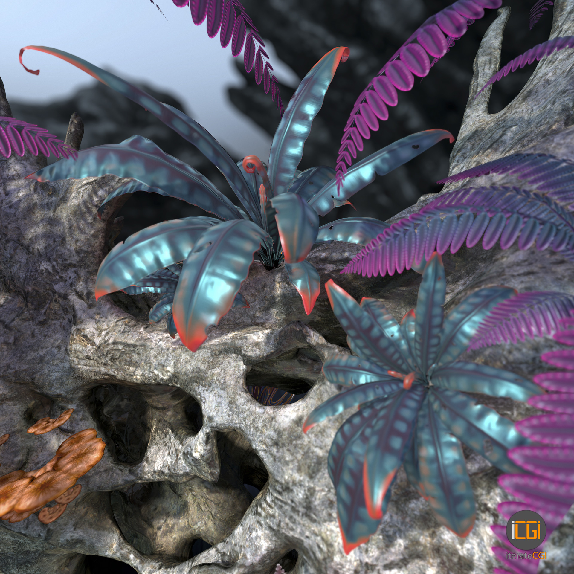 Johan de leenheer alien plant collection20