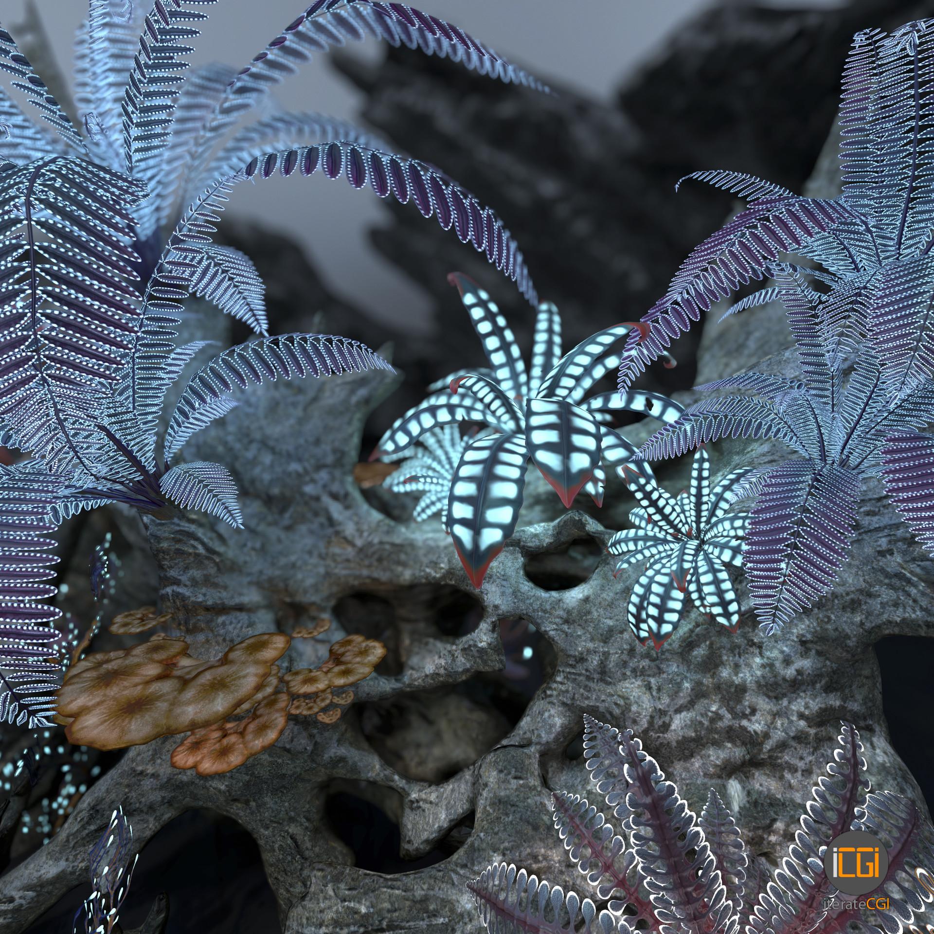 Johan de leenheer alien plant collection48