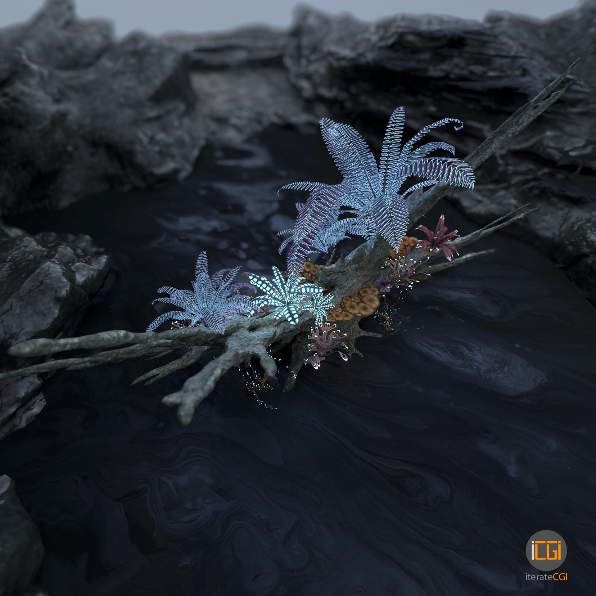 Johan de leenheer alien plant collection49