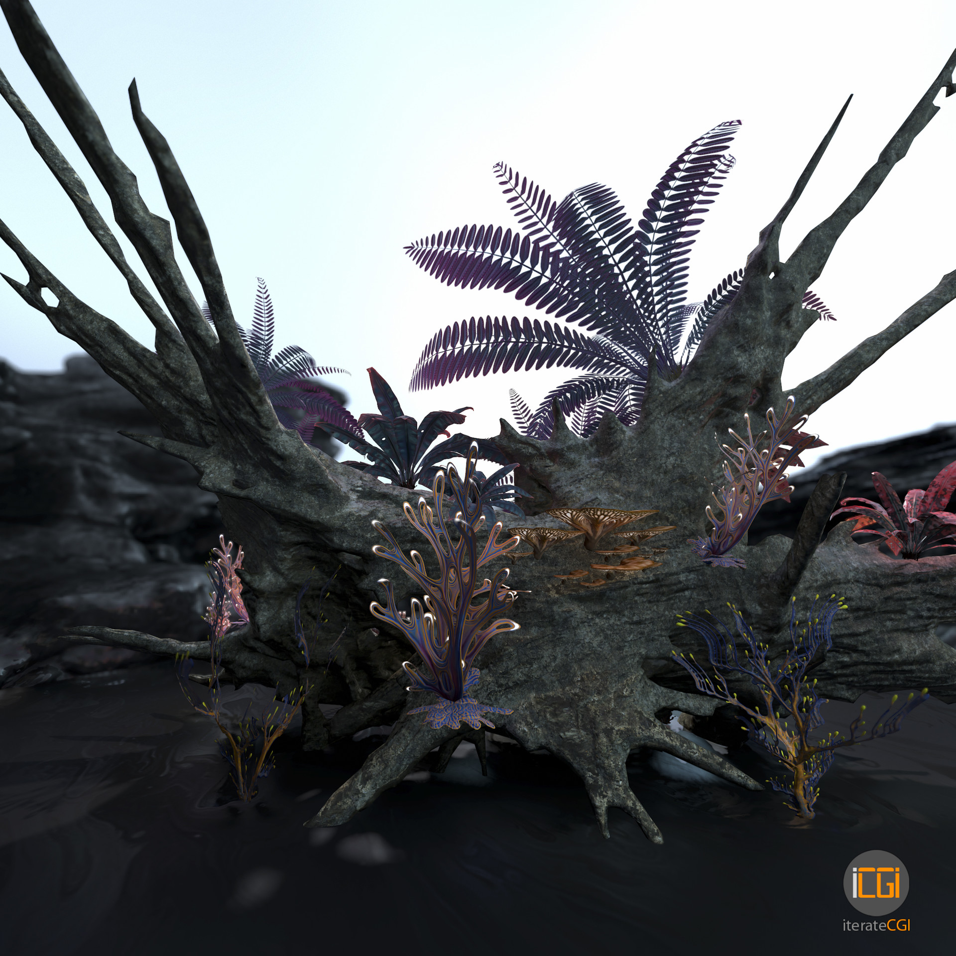 Johan de leenheer alien plant collection8