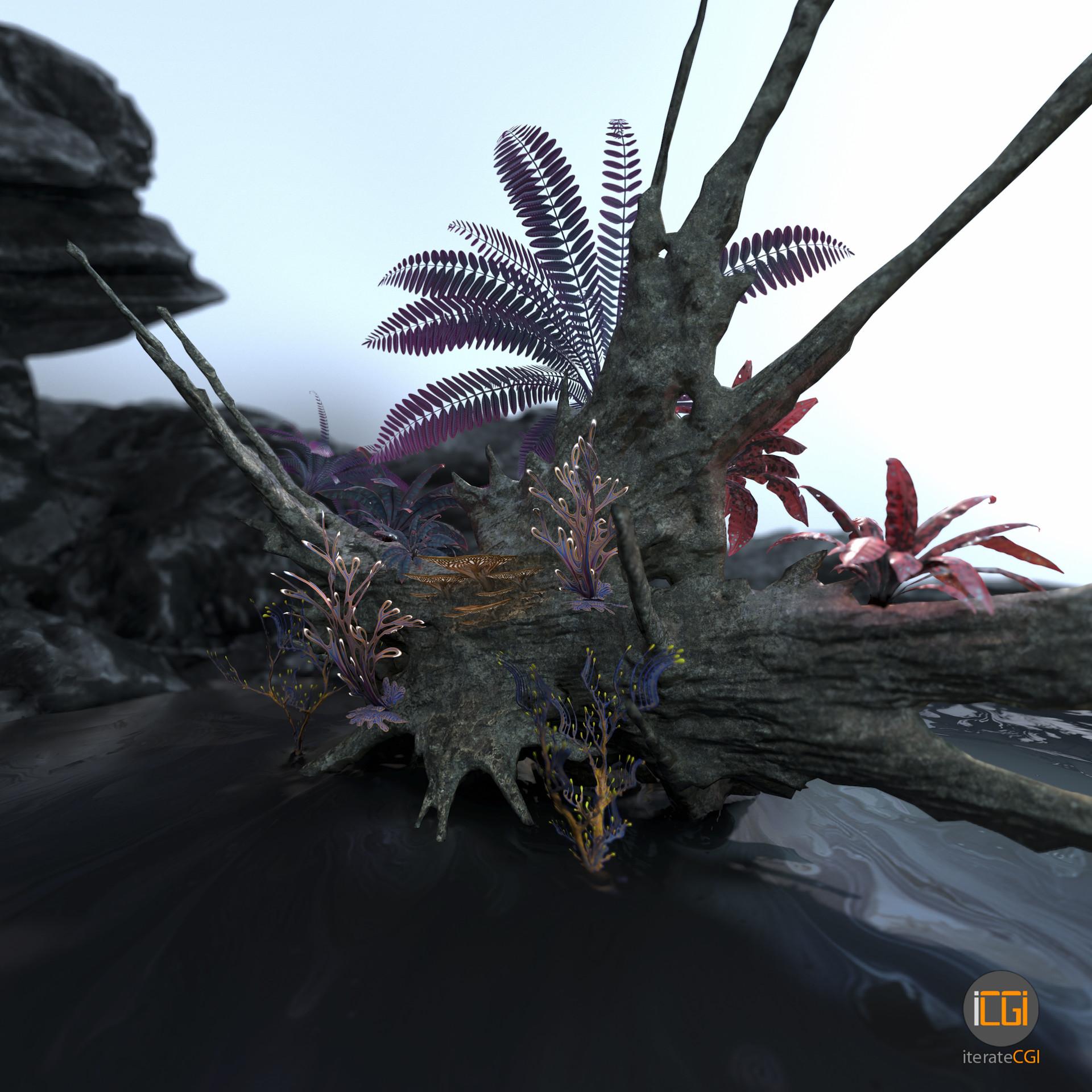 Johan de leenheer alien plant collection9