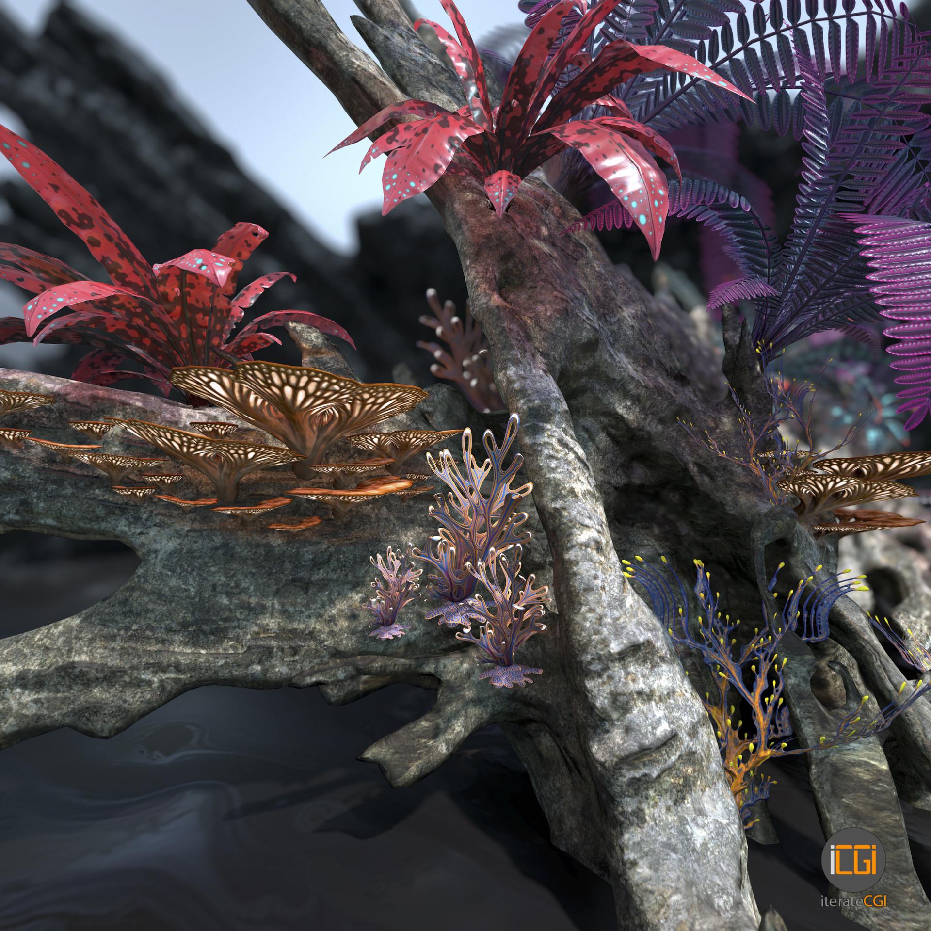 Johan de leenheer alien plant collection36