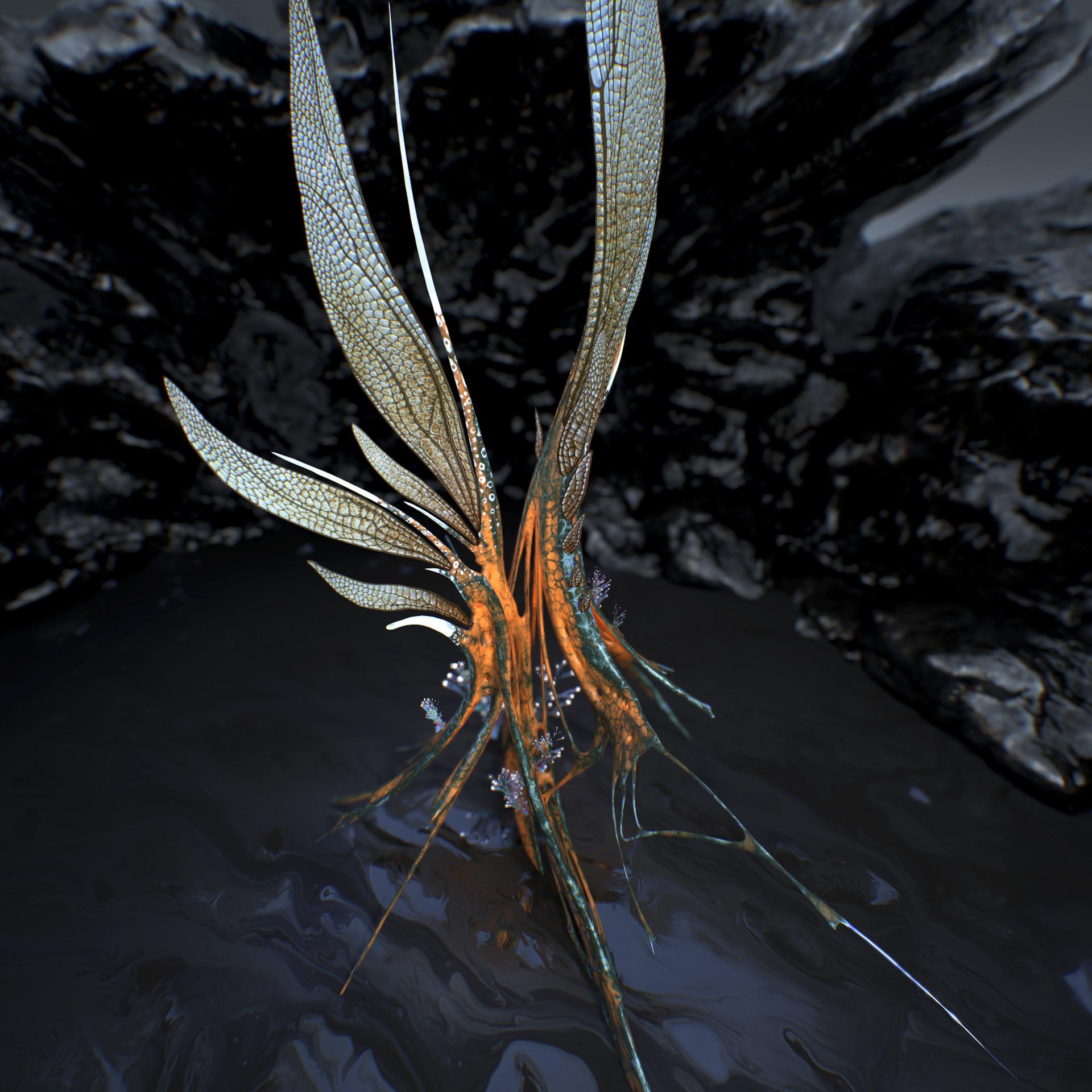Johan de leenheer alien fern misota spletinus26