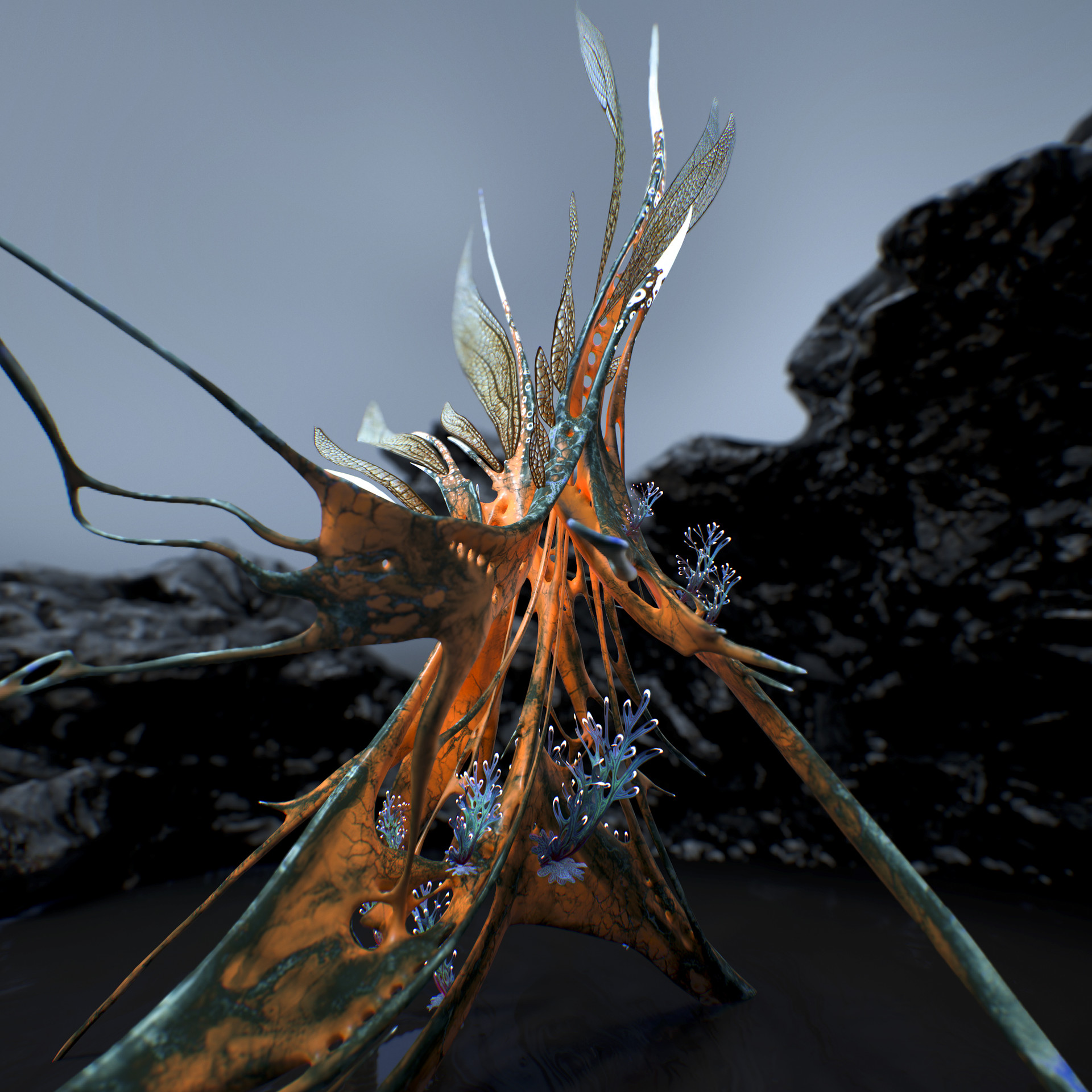 Johan de leenheer alien fern misota spletinus38