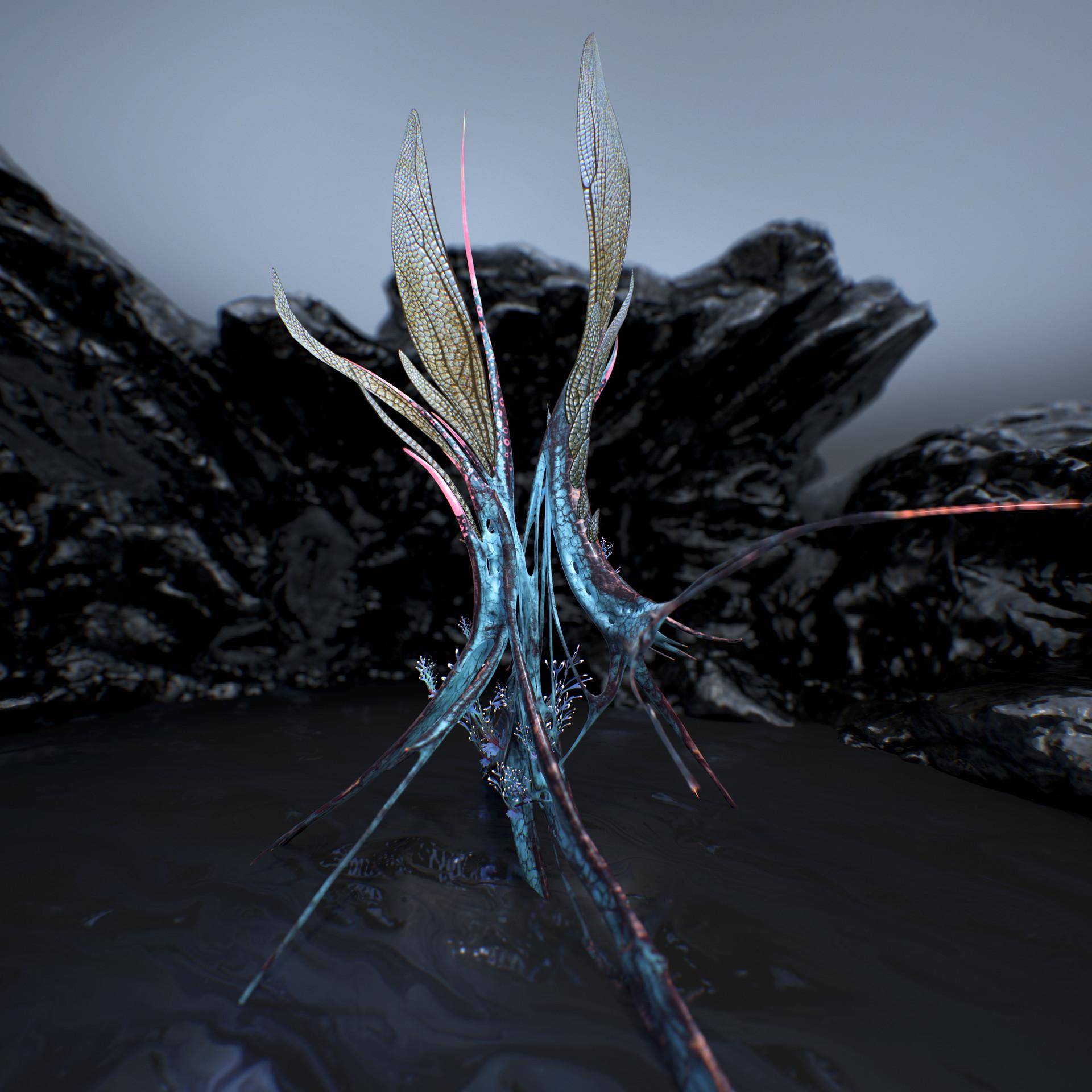 Johan de leenheer alien fern misota spletinus54