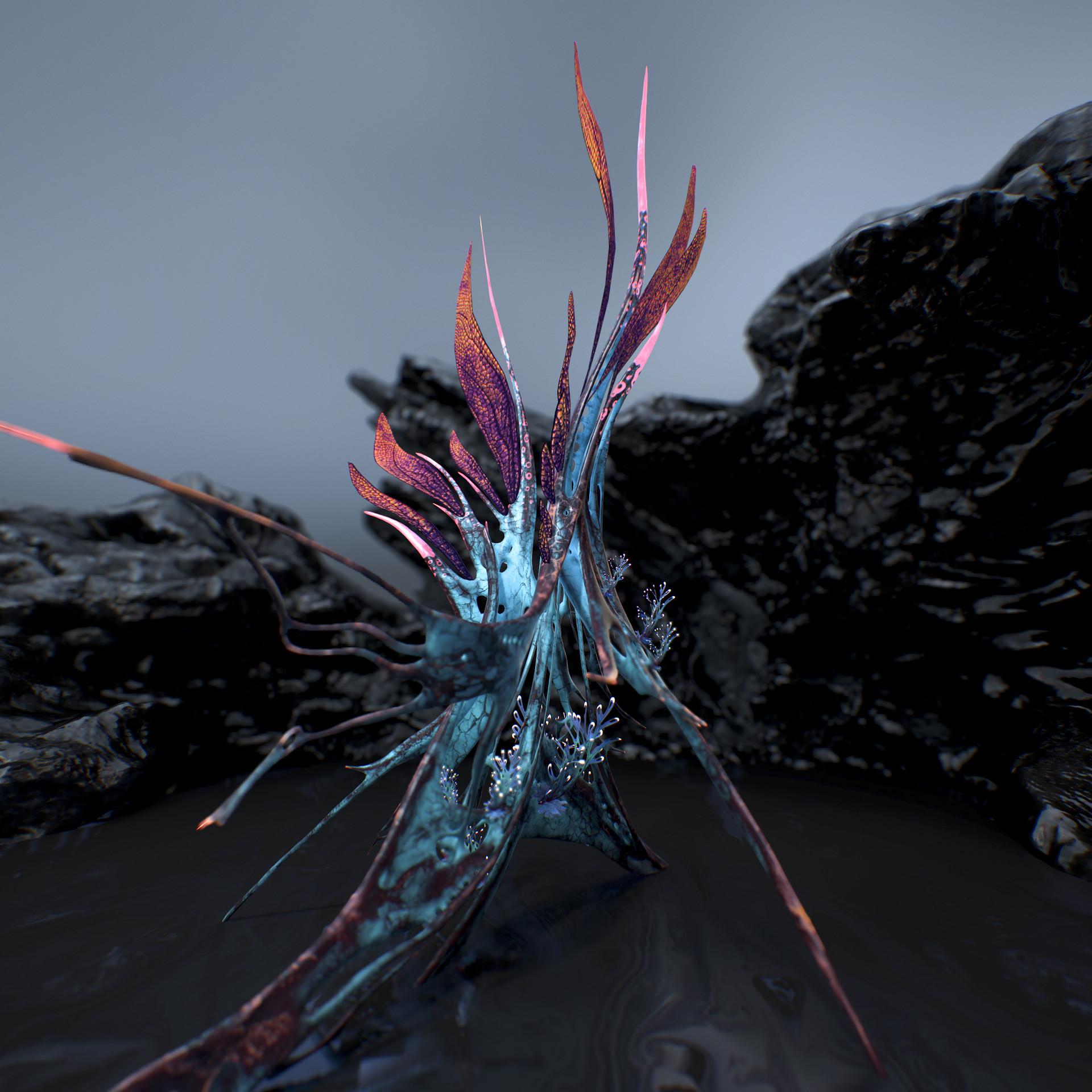 Johan de leenheer alien fern misota spletinus8