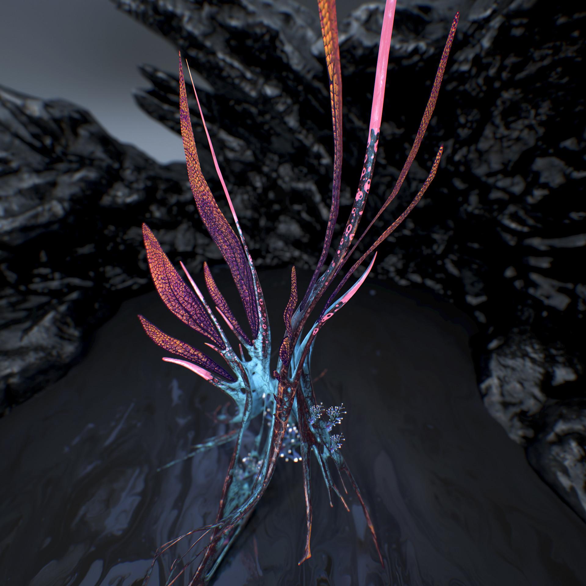 Johan de leenheer alien fern misota spletinus11