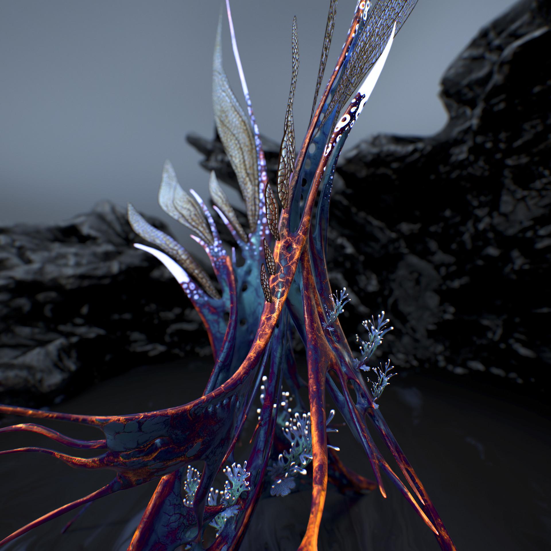 Johan de leenheer alien fern misota spletinus5