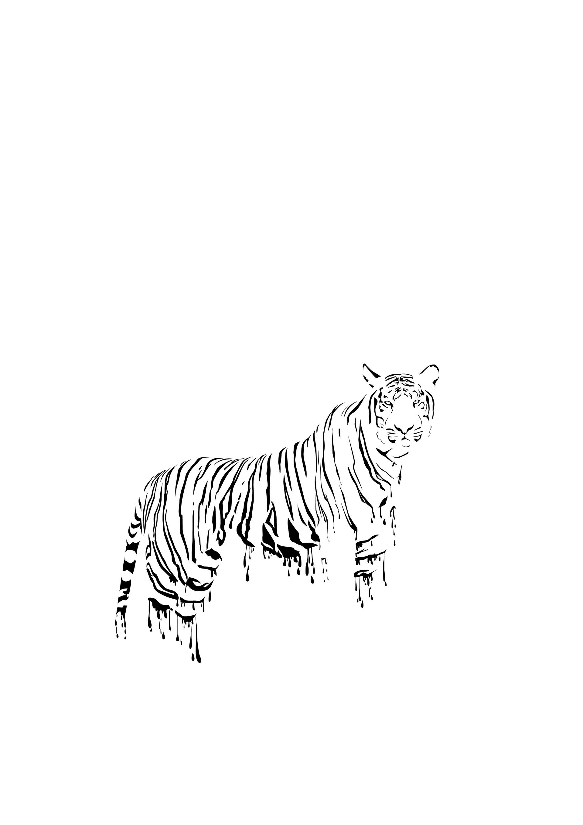 Rajesh sawant tiger global warming 01