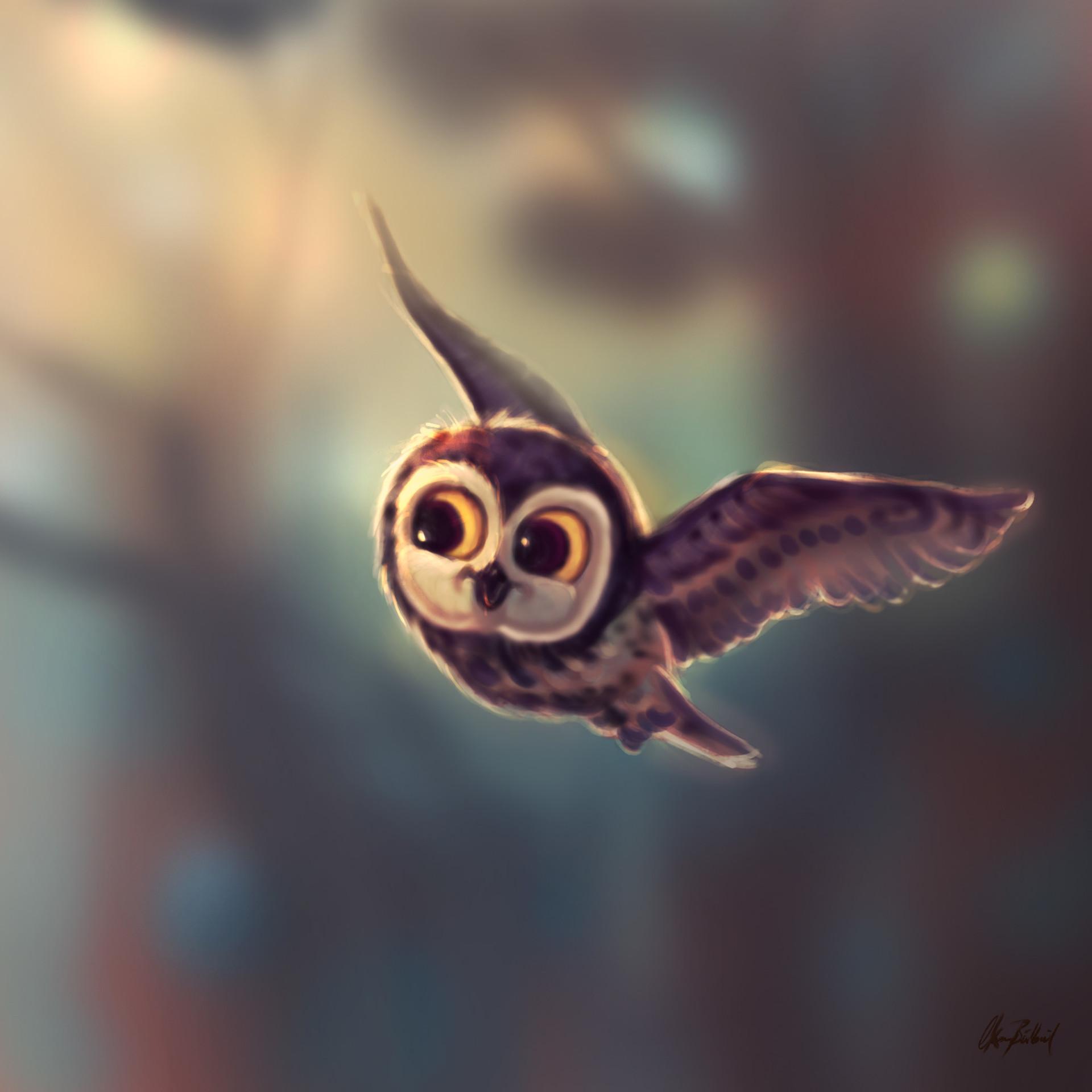 Okan bulbul flying owl01