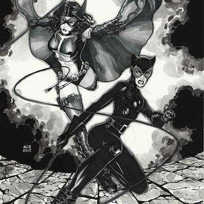 Ace continuado catwoman huntress
