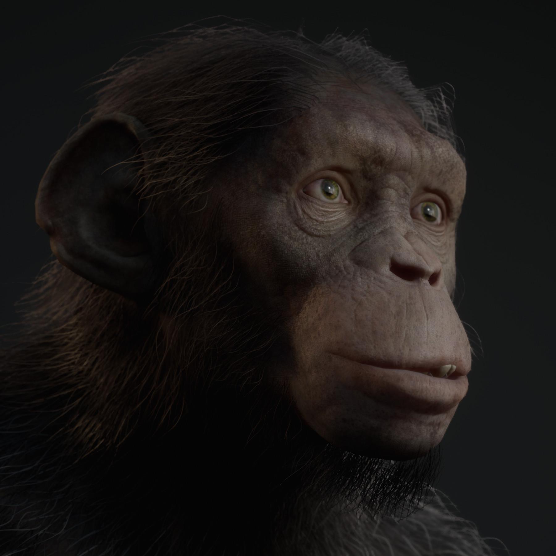 Artstation Planet Of The Apes Last Frontier Juno Ryan Kidd