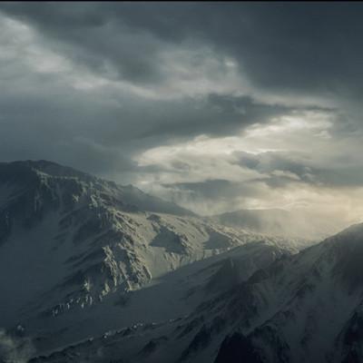 Steven cormann landscape