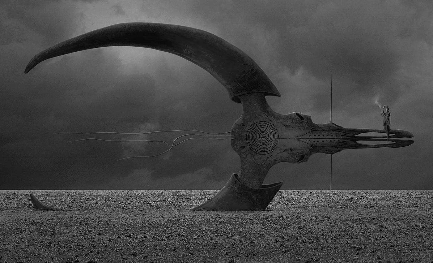 Alexey egorov bull s hex
