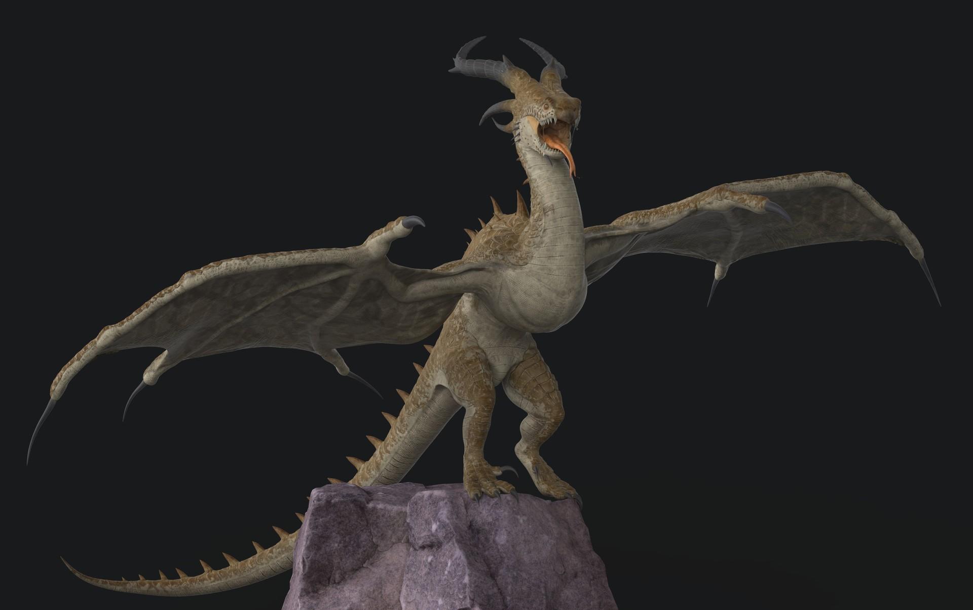 Miquel purra dragon 8
