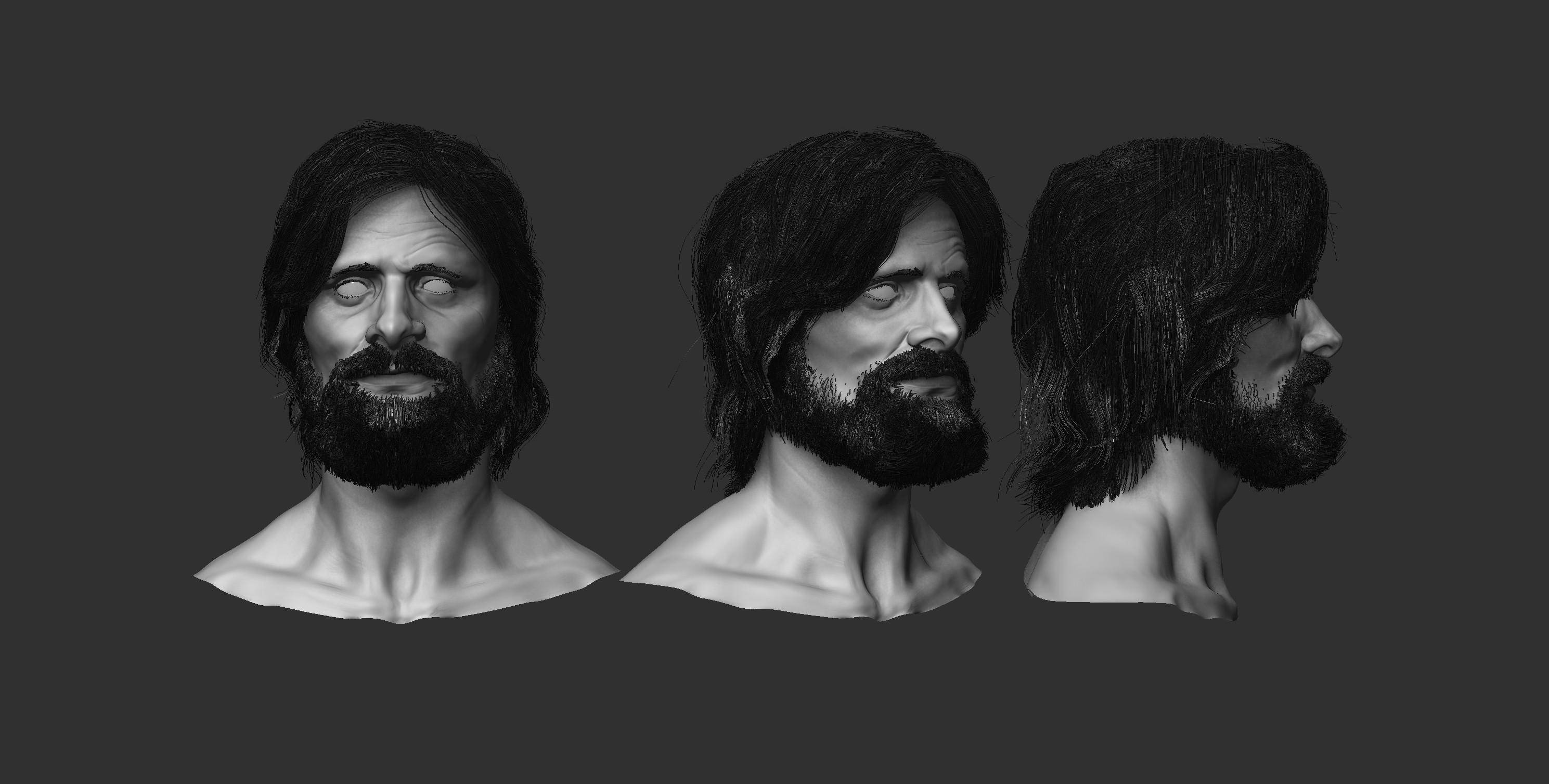 Hair  and beard with Fiber Mesh