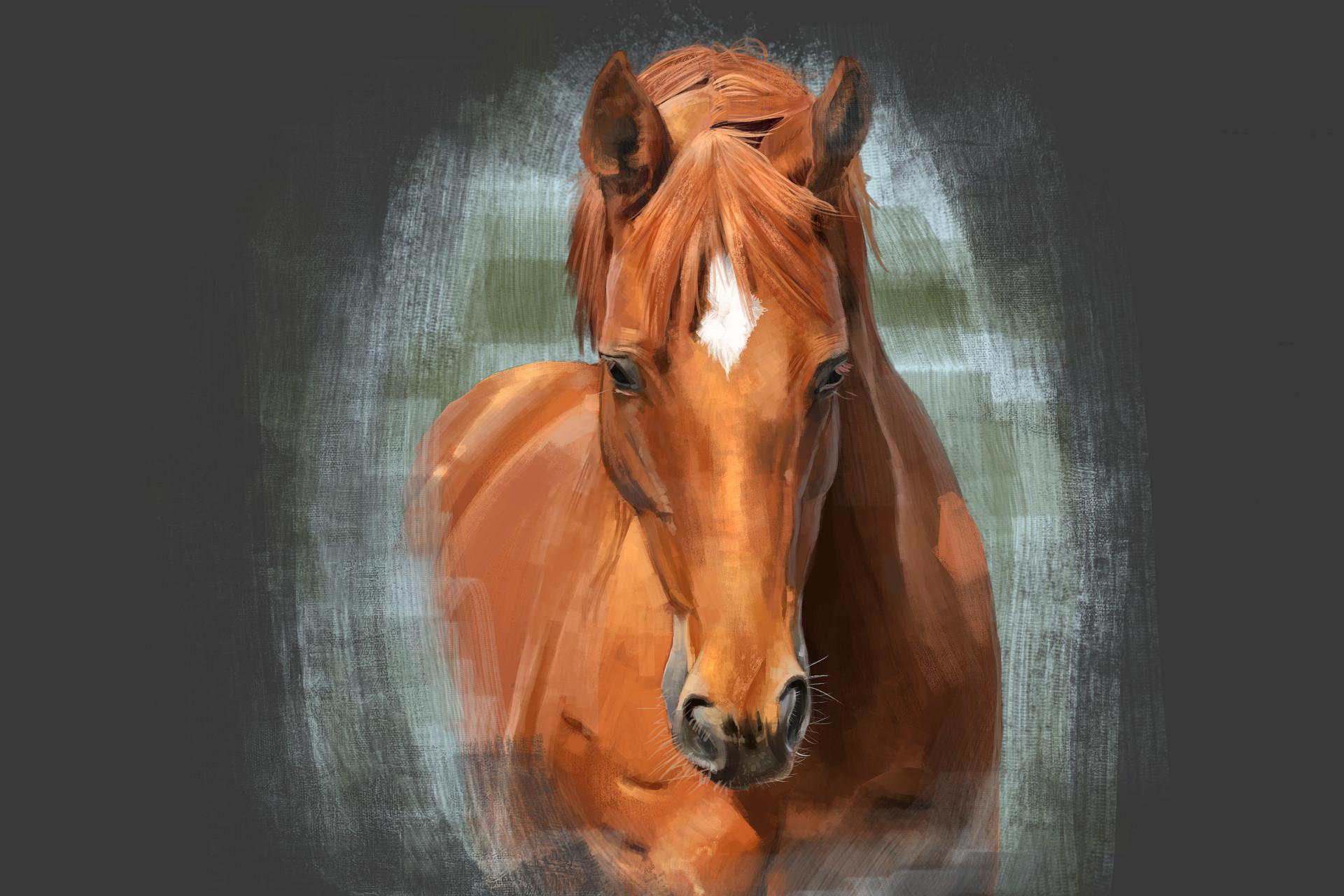 Roxanne chartrand chevalportrait3