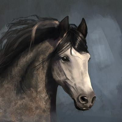 Roxanne chartrand chevalportrait