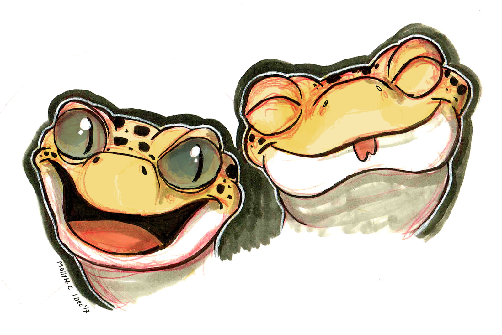 Leopard Gecko Head Designs