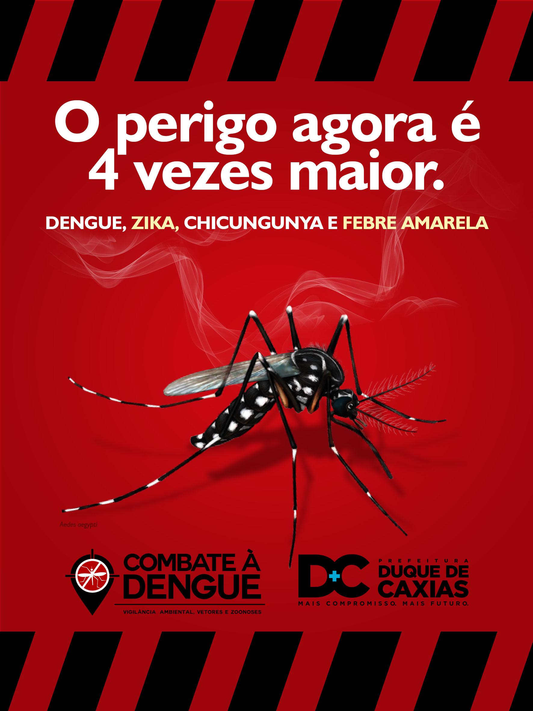Leandro calazans cartaz dengue