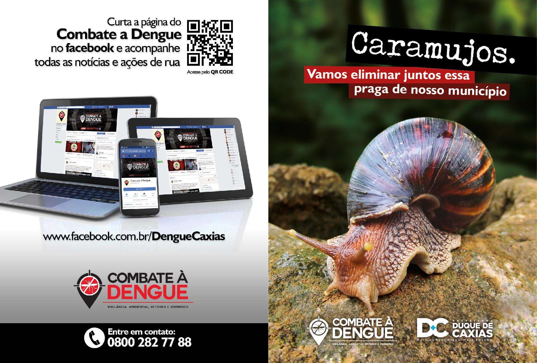 Leandro calazans folder caramujo 01