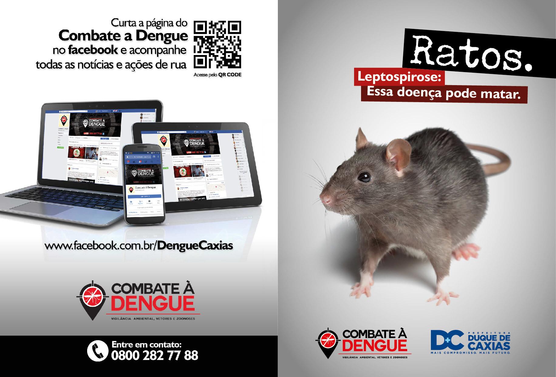 Leandro calazans folder rato 06