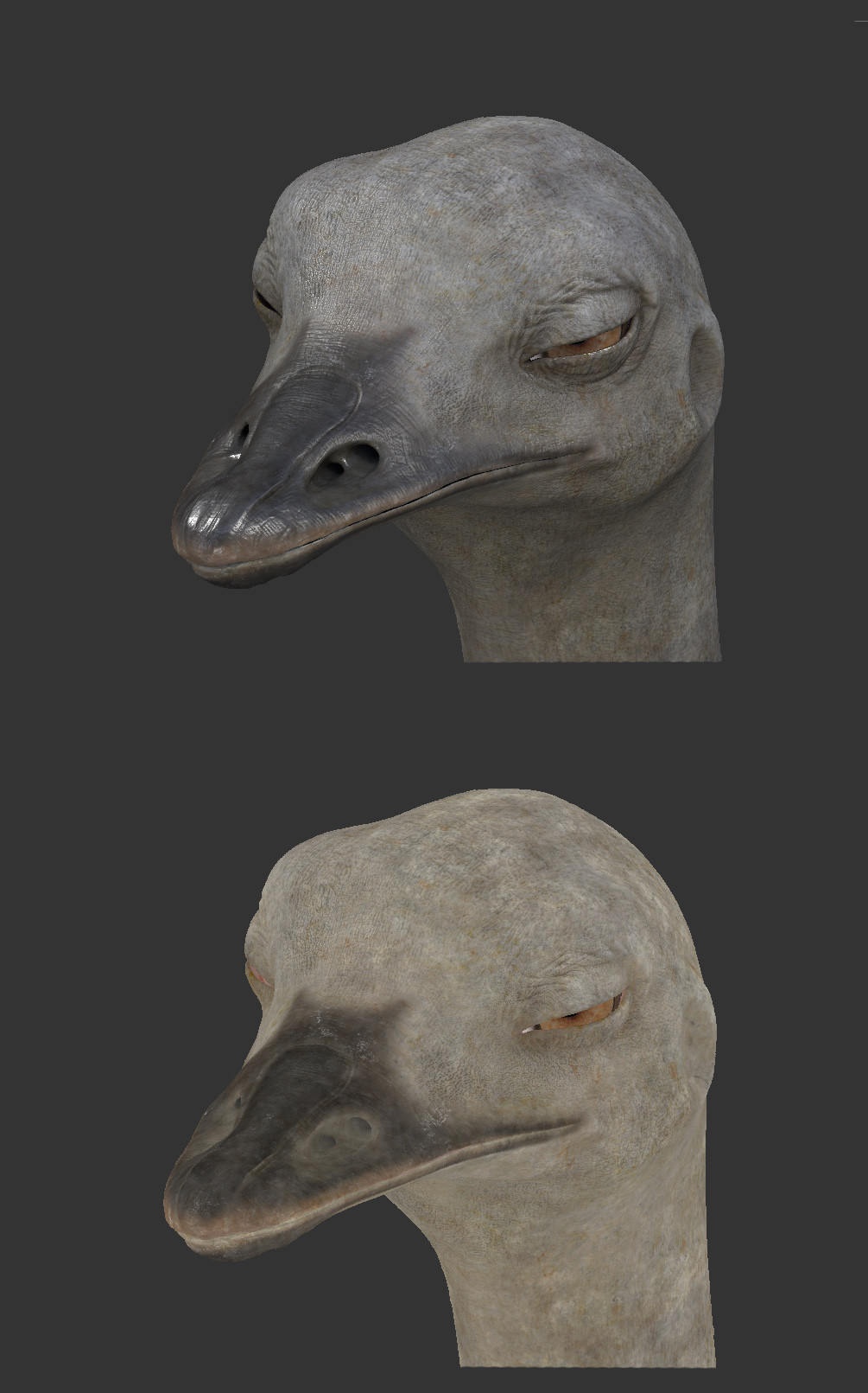 Ostrich texturing was made in Mari