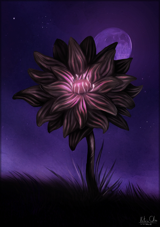 Victoria Collins Black Lotus